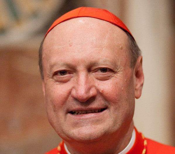 Descubra la biografía y obra de Gianfranco Ravasi, Presidente del Pontificio Consejo de la Cultura. Toda la información de la Santa Sede y la Iglesia, a su alcance.