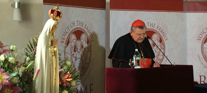 Los diez consejos del cardenal Burke para afrontar la crisis de confusión y división de la Iglesia