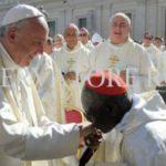 Sarah, 'ghostwriter' de las catequesis litúrgicas del Papa