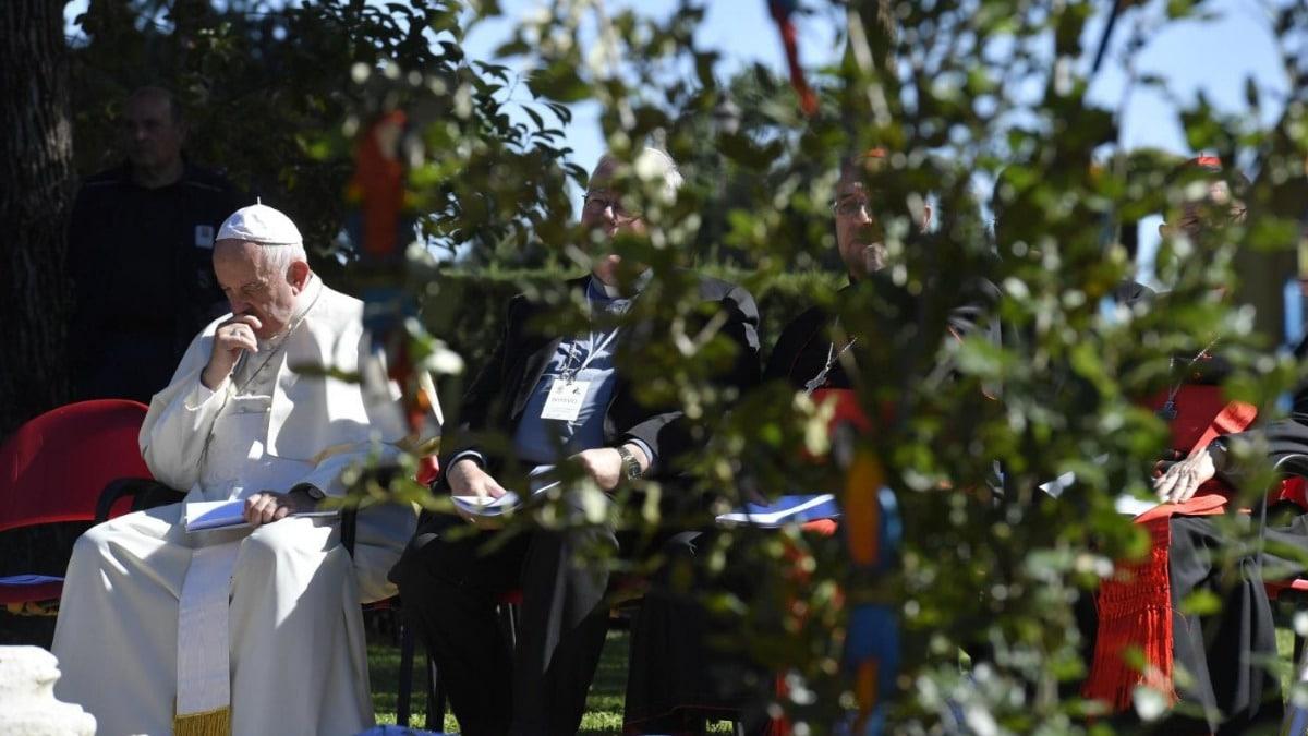Papa Francisco ecosostenible